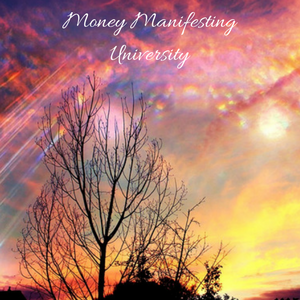 Money Manifesting Challenges